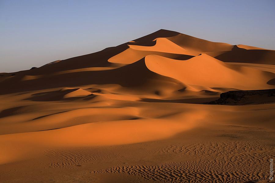 Алжир. Краткое содержание.