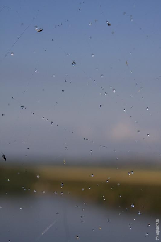 Погода москва на 3 дня по часам